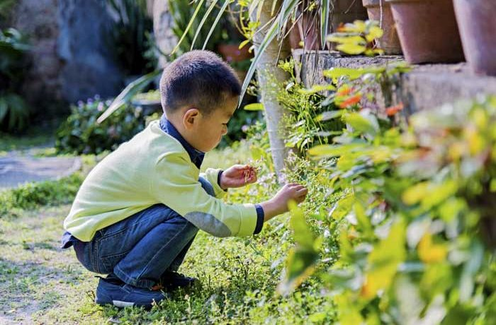 Little boy playing in the garden at a Nursery in Wandsworth
